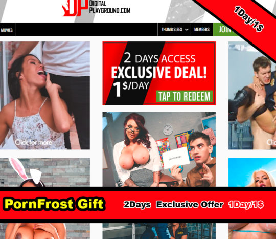 DigitalPlayground 1$